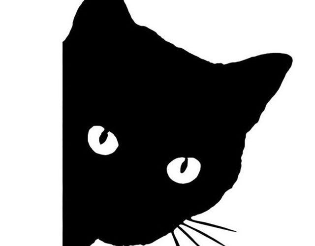 黒猫の画像 p1_10