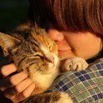 猫に好かれる人はどんな人?【猫にモテる方法があった!】