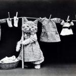 猫好きさんにおすすめなファッションブランド まとめ【11選厳選してご紹介します!】