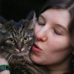 可愛い猫のクッション・抱き枕20選【もふもふで癒される!】
